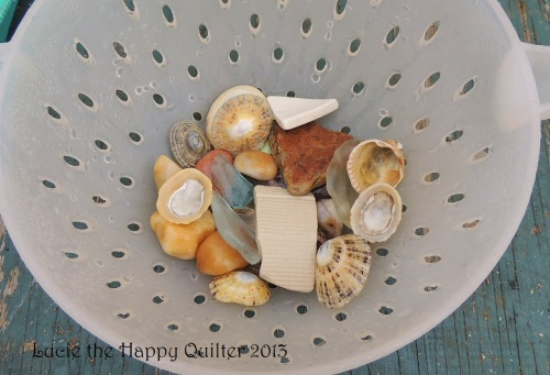 Seashells and pebbles collected on the beach
