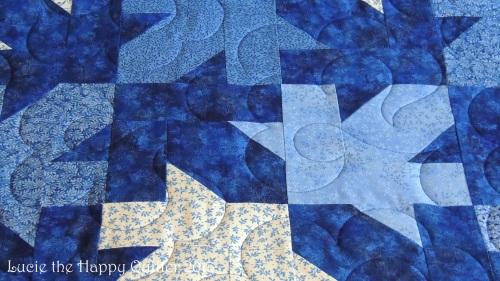 Joan's quilt 3