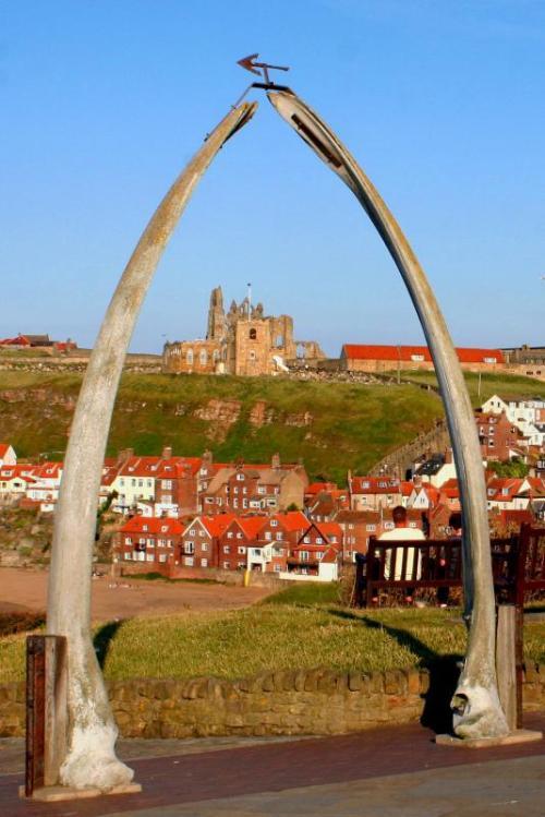 Whitby Abbey thru the whale bones