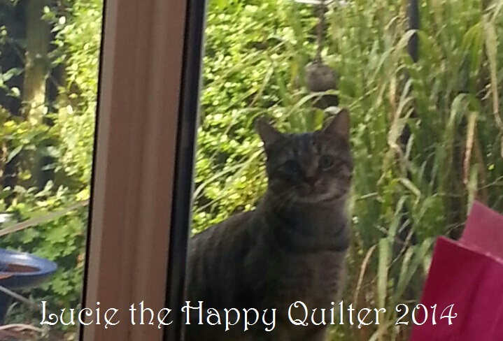 Lucie The Happy Quilter S Blog Sewing Tales Of A Longarm