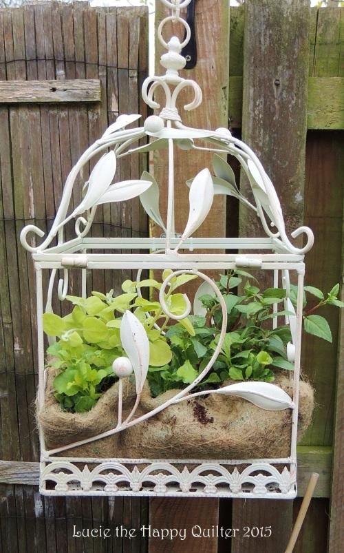 Birdcage hanging basket